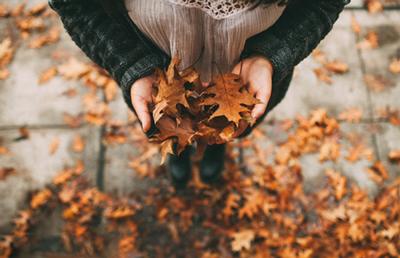 جمله های زیبا درباره ی فصل پاییز, پیامک شروع فصل پاییز