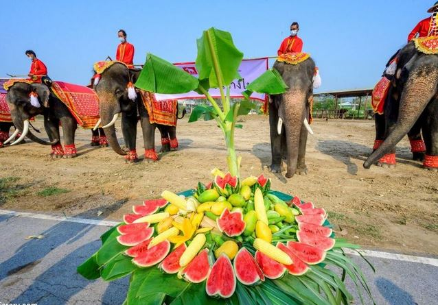 روز ملی فیل,اخبارگوناگون,خبرهای گوناگون