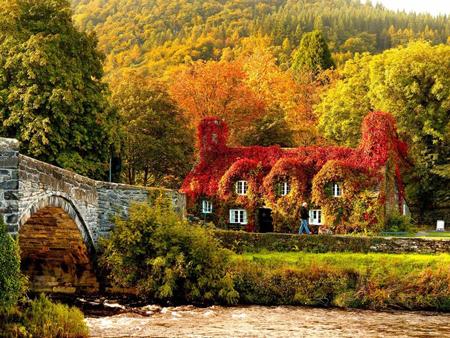 منظره پاییز, عکس های زیبا از پاییز