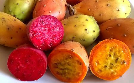 خاصیت میوه ی کاکتوس,خاصیت های میوه ی کاکتوس