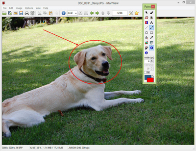 تبدیل فرمت عکس ها انلاین, نرم افزار تبدیل فرمت عکس ها jpeg