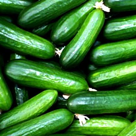 ترفندهایی برای نگهداری میوه ها, راهنمای نگهداری میوه و سبزیجات