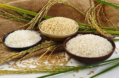 نکاتی برای خرید برنج ایرانی, راهنمای خرید برنج ایرانی