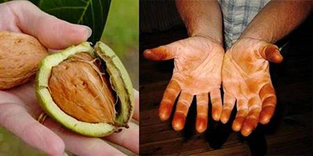 خرید بهترین گردو و بادام,روش صحیح پوست گرفتن گردو و بادام