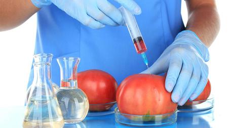 بیوتکنولوژی,رشته بیوتکنولوژی