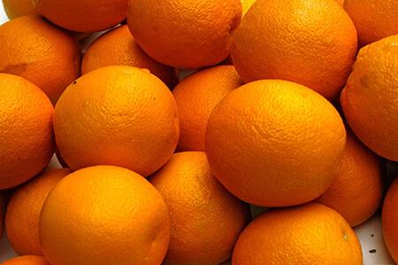 اصول نگهداری از پرتقال,شیوه های نگهداری از پرتقال,راهنمای خرید پرتقال