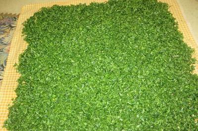 راهنمای خشک کردن سبزی,نکاتی برای خشک کردن سبزی