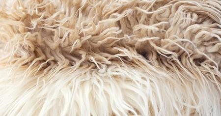 ساختار فرش های پشمی, طرح های سنتی فرشهای پشمی, فرش پشمی مدرن