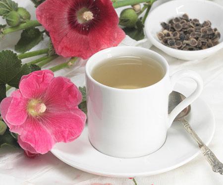 cough teatment01 3 درمان سرفه با استفاده از گیاهان دارویی
