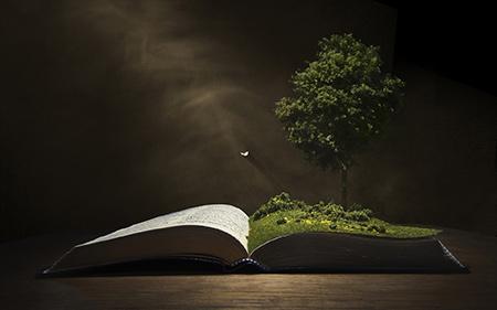 حدیث در مورد کتاب خوانی, درباره اهمیت کتاب وکتابخوانی,حدیث اهمیت کتاب