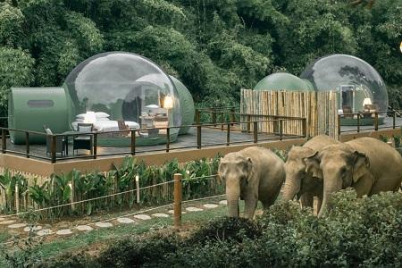 جاذبه گردشگری تایلند, جنگل حباب, اقامت در حباب های جنگلی تایلند